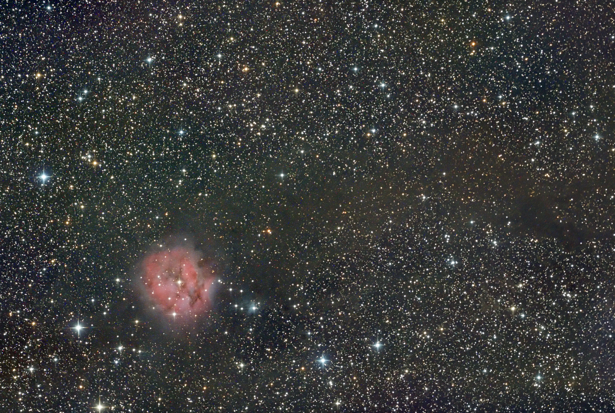 Ic 5146 The Cocoon Nebula. Shawn Nielsen 2013