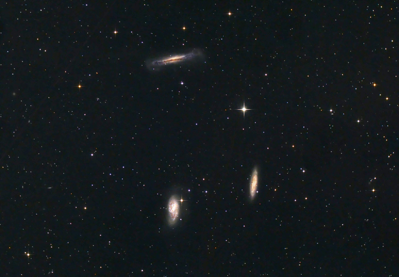 Leo Trio Galaxy Group - June 2011, Shawn Nielsen