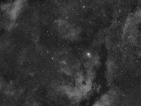 Sadr region in the constellation of Cygnus. Shawn Nielsen 2014