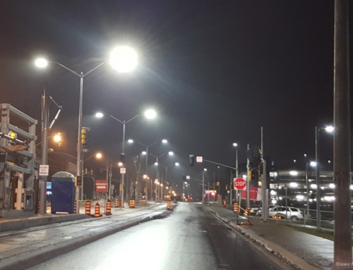 Ecological benefits of part-night lighting revealed