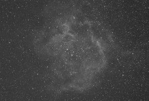 Rosette-SII-TAK106-STL11000M-NM