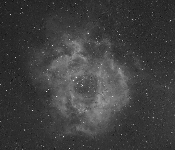 Rosette nebula narrowband Ha image taken with Zenithstar71 refractor and ASI1600mm-c camera