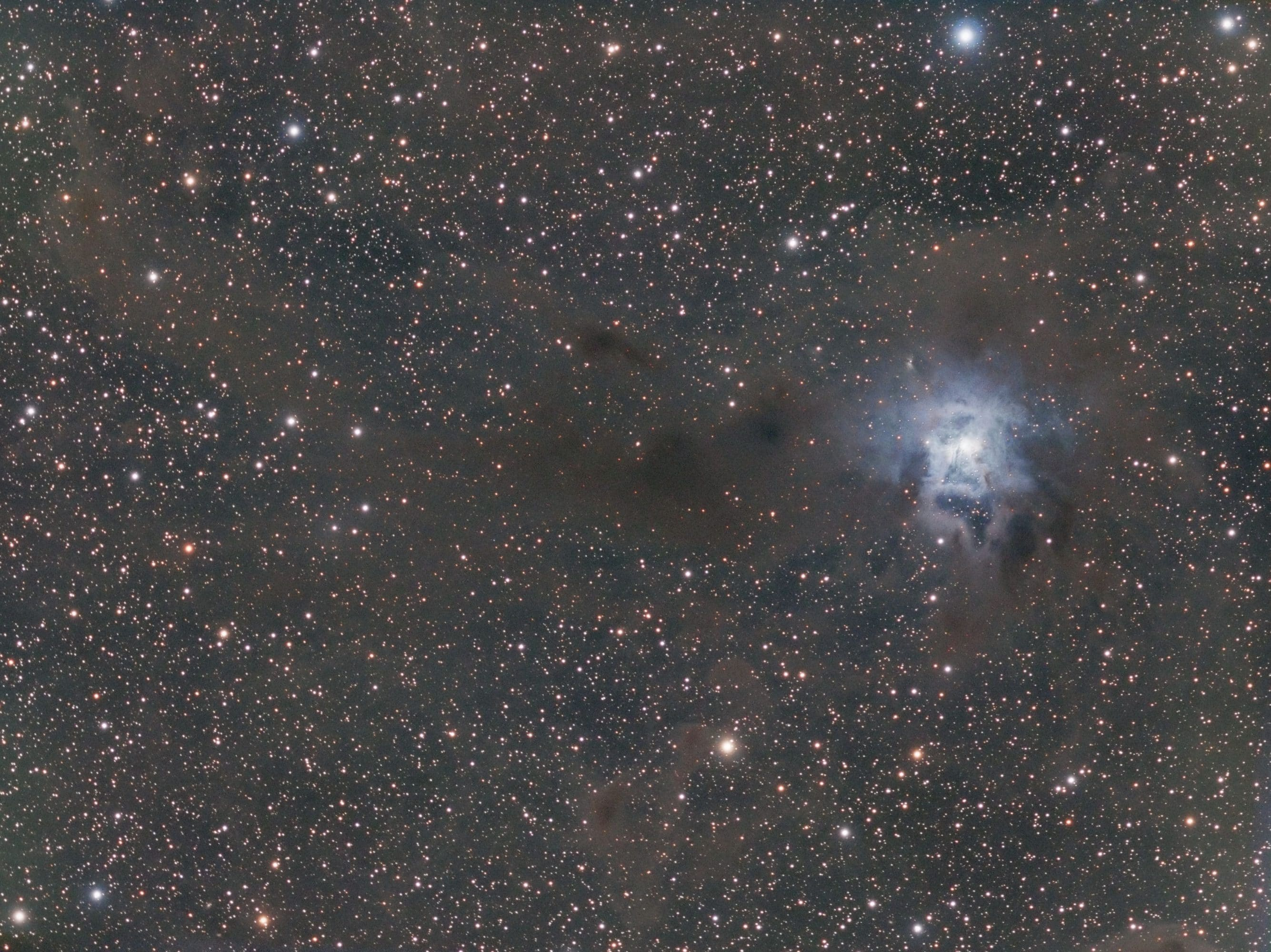 Iris Nebula NGC 7023 taken from Oliphant, Ontario in September 2017.