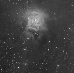 "Iris Nebula NGC 7023. 45min luminance image taken with a Planewave 24"" CDK located in the Sierra Mountains, USA."