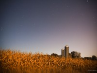 Starry night over cornfields and silos