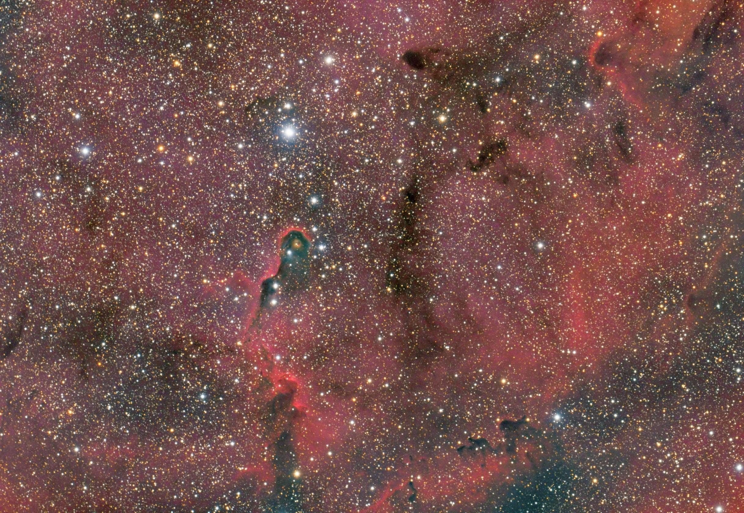 IC1396 and Elephant Trunk Nebula