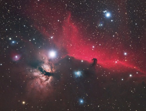 Return to the Horsehead and Flame Nebulae