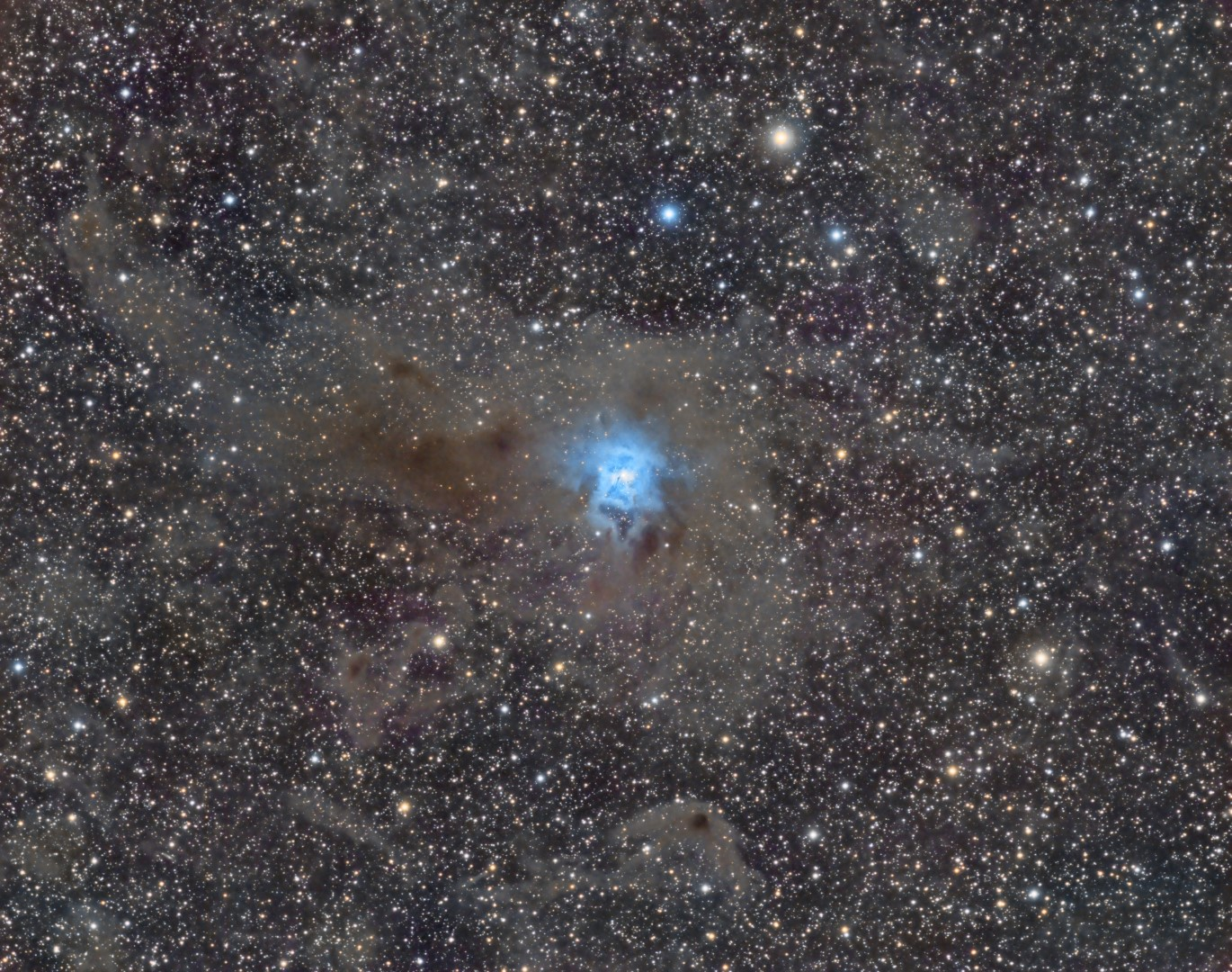 Iris nebula in Cepheus 26 hours of data. By Shawn Nielsen. VisibleDark.ca