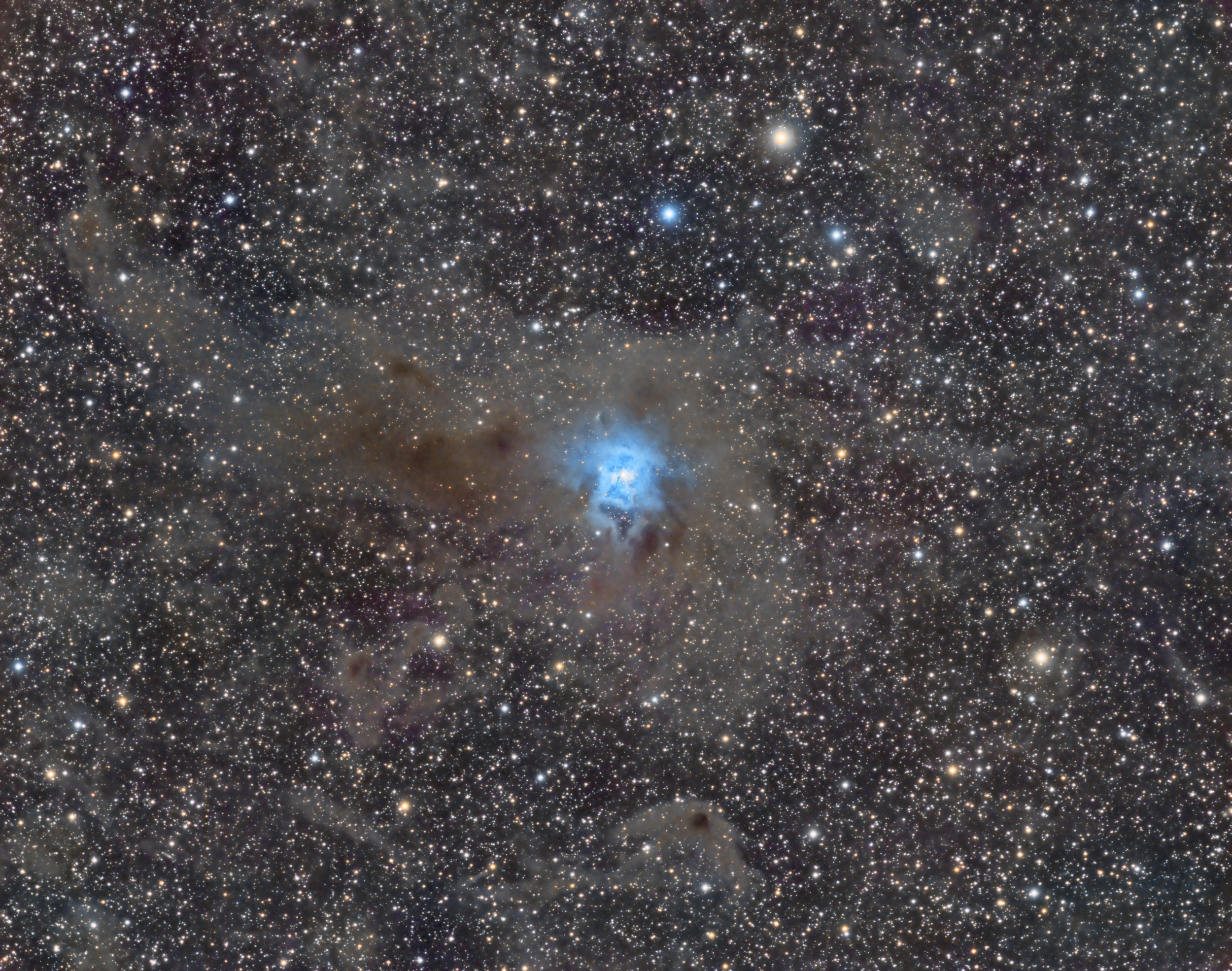 Iris nebula in Cepheus 26 hours of data. By Shawn Nielsen. VisibleDark.ca