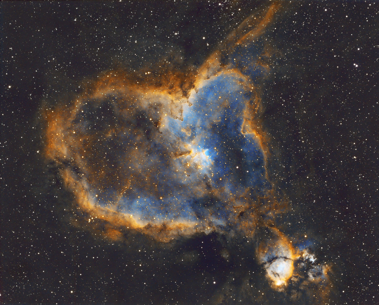 IC1805-SHO-ver8-small (Custom)